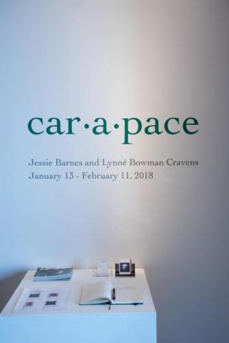 car·a·pace