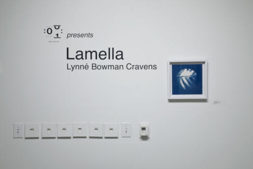Lamella, Hands and Face